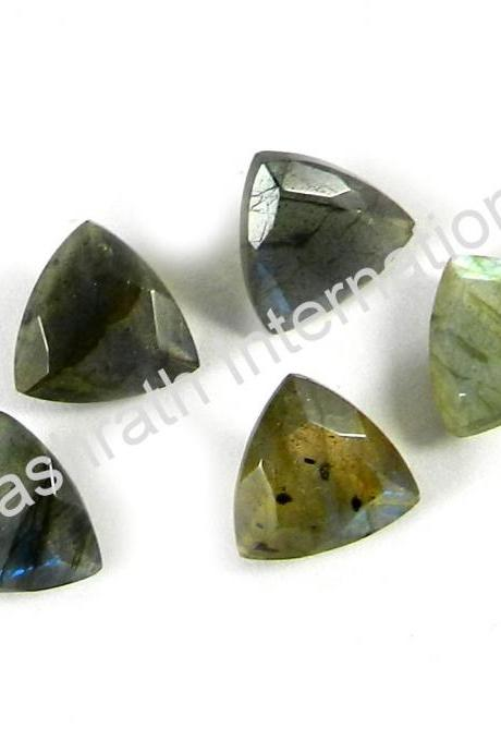 6mm Natural Labradorite Faceted Cut Trillion 25 Pieces Lot Gray Color Blue Power Calibrated Size Top Quality Loose Gemstone